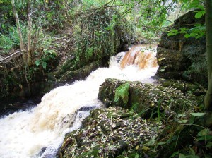 Waterfall formed by a breach in the old Elderslie Cotton Mill Dam